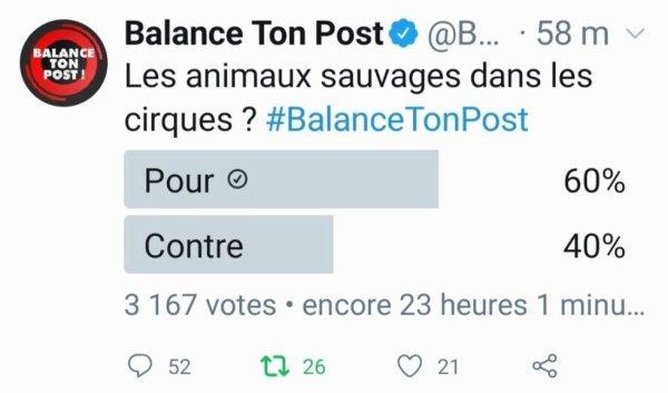 Plus le débat sur les animaux dans les cirques avancent, et plus les français se prononcent majoritairement POUR les cirques avec animaux. De 51% d'opinions favorables, nous en sommes désormais à 60% !! Continuons à nous mobiliser et à défendre le cirque, le seul, le vrai : celui AVEC ses animaux !!
