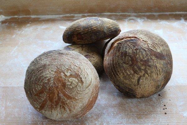 Proximag : Conso local produits : La Boulangerie du Moulin - Ellignies