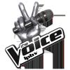 thevoice-lpbv