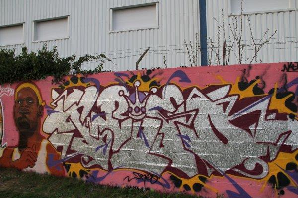 lebron james mechro feat treo nlj crew
