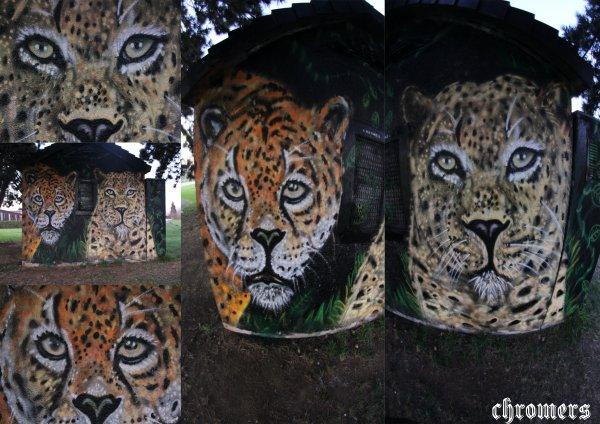 leopard prod fini