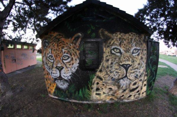 leopard in da place by CHROMERS