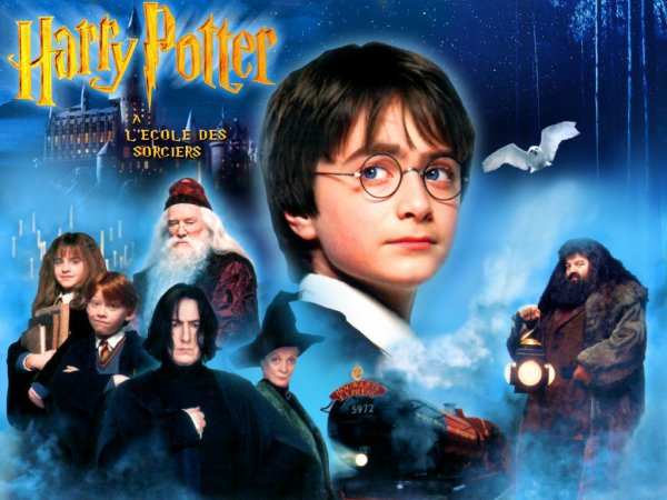 * Harry Potter à l'école des sorciers (Harry Potter and the Philosopher's Stone)