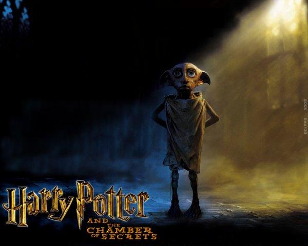 * Harry Potter et la chambre des secrets