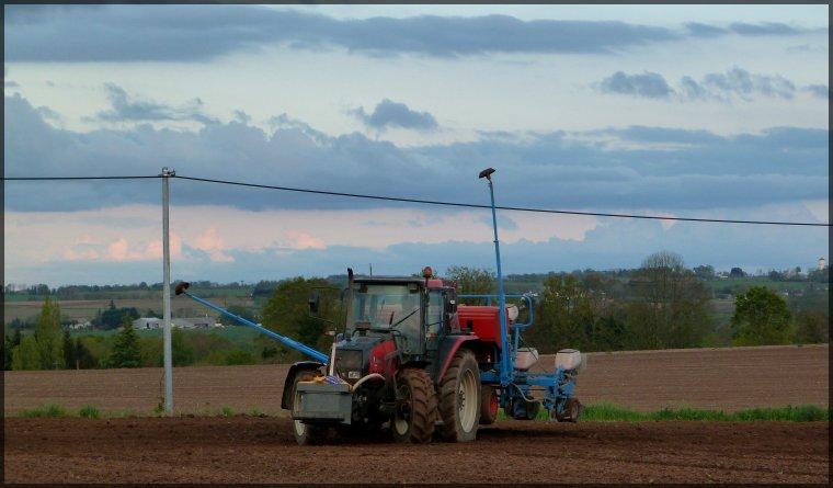 semis de maïs 2012!