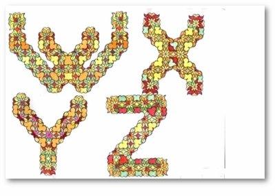 W X Y Z en petites fleurs -in small flowers