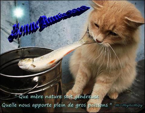 Au revoir 2012 !!! Bonjour 2013 !!!