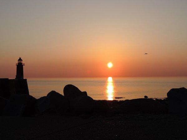 SEA, SUN AND FISHS