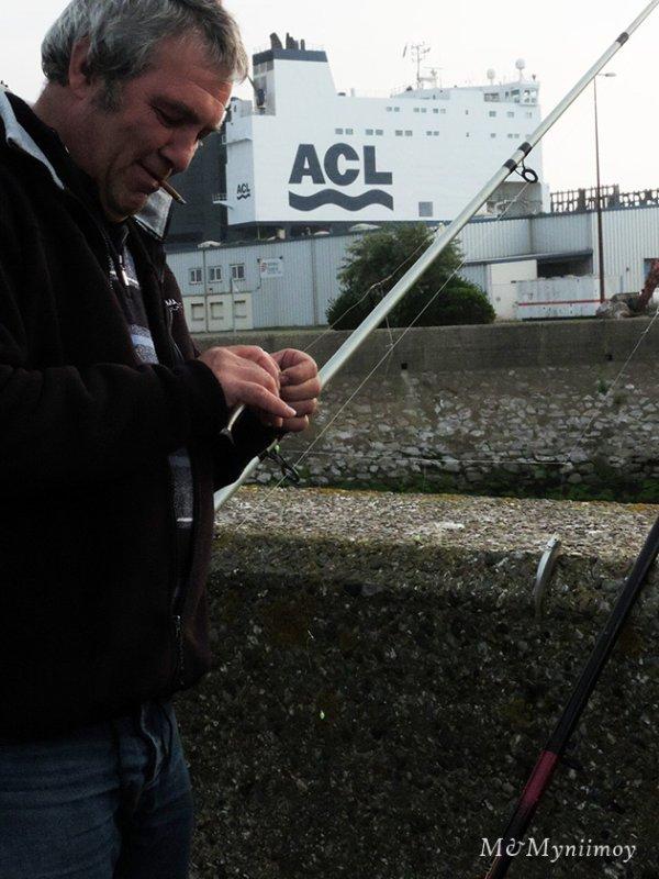 Résultat de la pêche à Dunkerque du 6/09/14