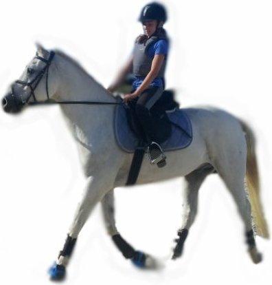 Dans l'équitation, ce n'est pas le résultat qui compte, mais la façon d'y parvenir.