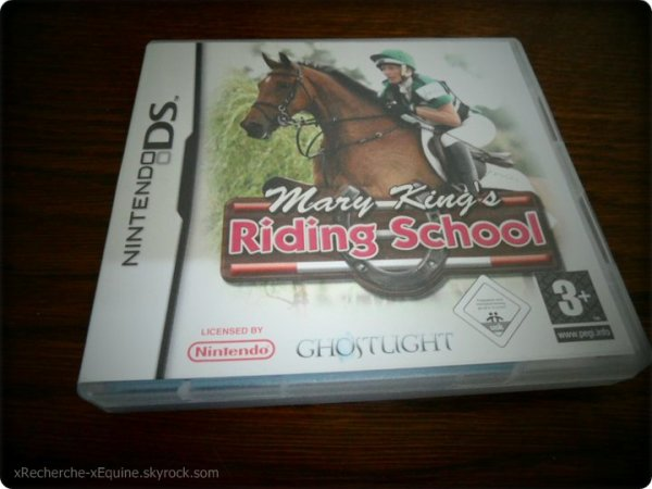 Objet  a Vendre jeu DS