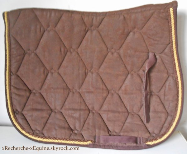 A Vendre tapis marron liseré or.