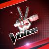 TheVoice-virtuelgame  fête ses 21 ans demain, pense à lui offrir un cadeau.Aujourd'hui à 08:05