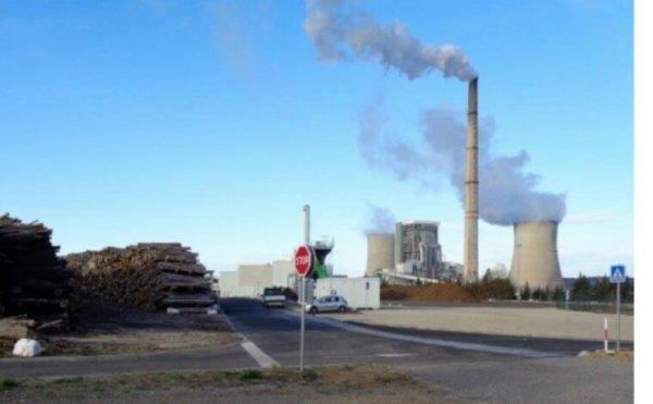 La centrale à biomasse de Gardanne est un contre-sens écologique, selon les opposants