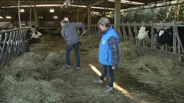 A Brest la ferme bio fait de la résistance