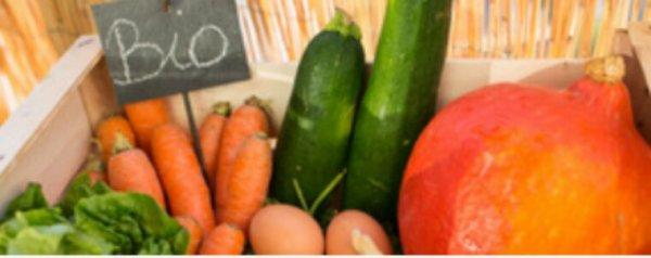 Le marché de Rungis ouvre la plus grande halle de produits bio d'Europe