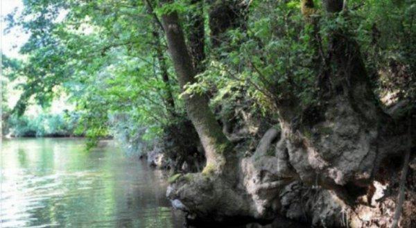 Alerte à la sécheresse en Ille-et-Vilaine, le préfet impose des restrictions