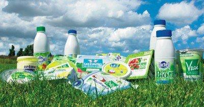 Les produits laitier bio en ruptures de stocks