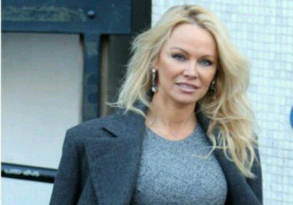 Pamela Anderson appelle le parc Marineland d'Antibes «à libérer» ses animaux