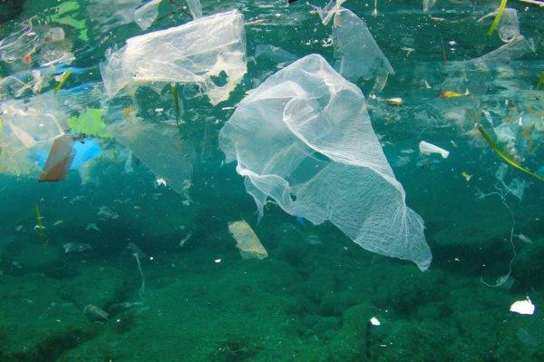 La pollution des océans