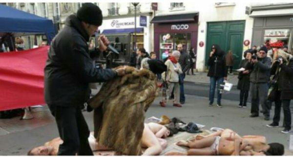 Paris : l'action choc des militants anti-fourrure