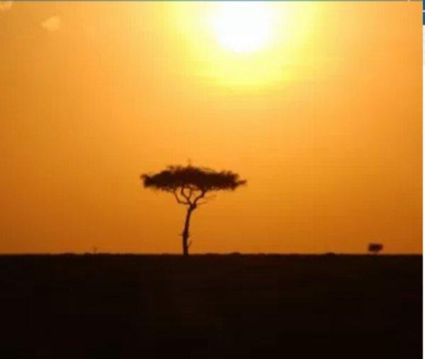 Le Kenya se lance dans l'énergie nucléaire