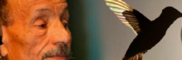 Plusieurs artistes s'engagent au côté de Pierre Rabhi pour l'écologie