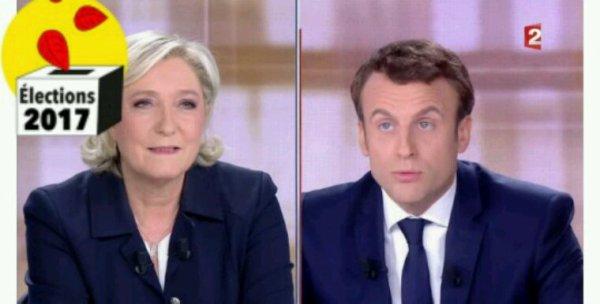 """TRIBUNE. """"Sur l'écologie, tout oppose Emmanuel Macron à Marine Le Pen"""""""