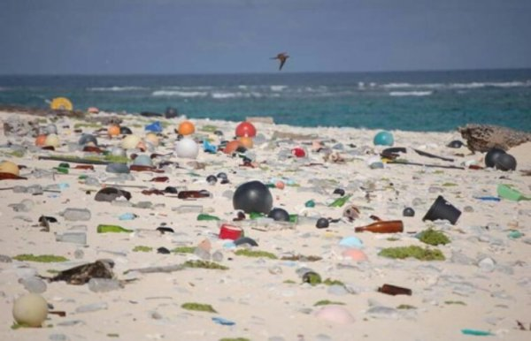 Des tonnes de déchets découverts sur une île déserte inhabitée
