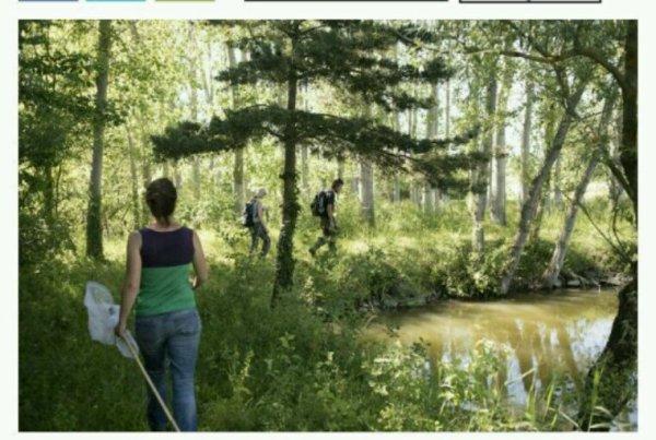Contre le projet autoroutier A45, les naturalistes entrent en jeu