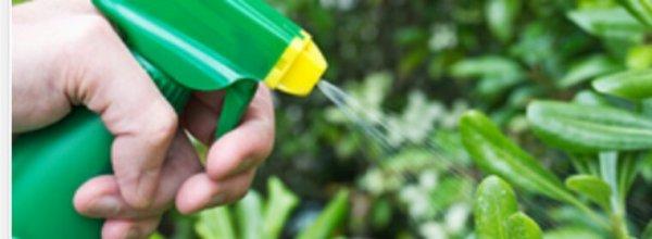 Couac gouvernemental sur les pesticides: en fait, rien n'est vraiment réglé