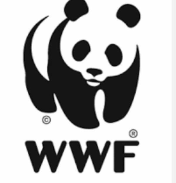 Actualité wwf: La France en tête de l'UE pour sa stratégie bas-carbone