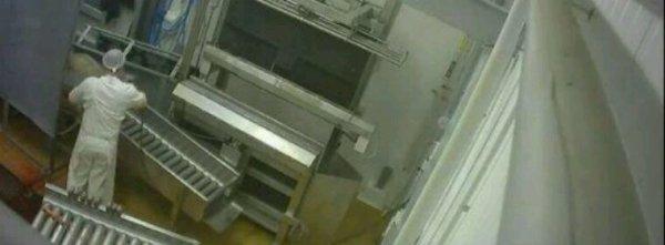 Caméras cachées dans un abattoir: 15.000 euros d'amende requis contre les deux militants de l'association L214