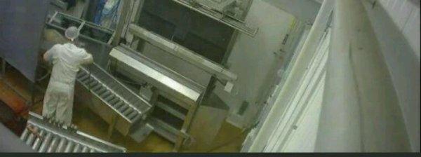 Dernière minutes :Caméras cachées dans un abattoir: Deux militants de l'association L214 condamnés à une amende