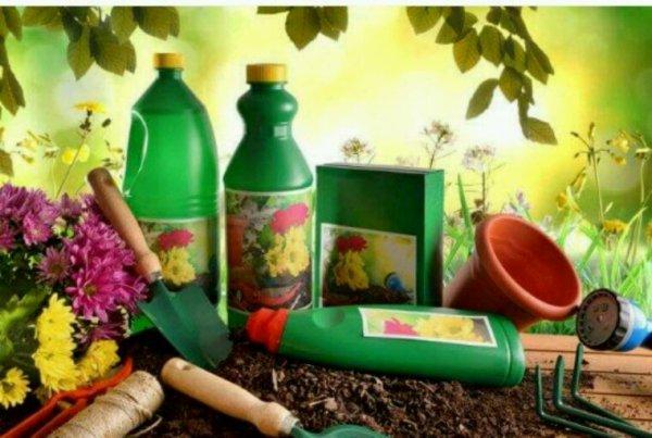 Auchan bannit les produits de jardinage au glyphosate de ses rayons
