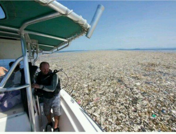 Une nouvelle île de plastique photographiée dans les Caraïbes