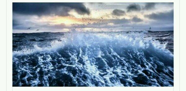 Protéger les océans, uneurgencevitale
