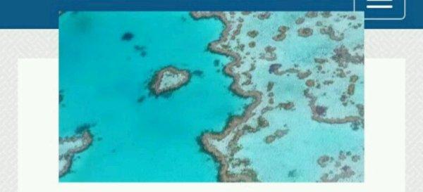 Australie : la Grande barrière de corail menacée par une mine de charbon