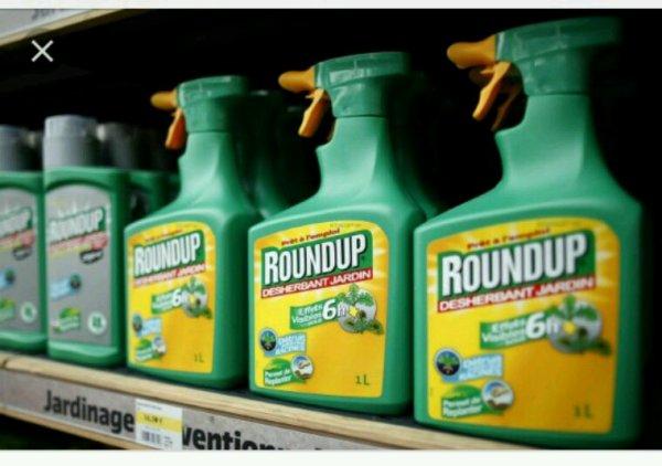Glyphosate : Monsanto tente une dernière man½uvre pour sauver le Roundup