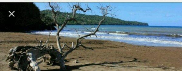 Une nouvelle réserve naturelle nationale sera créée à Mayotte