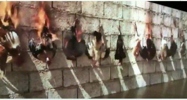 Les défenseurs des animaux indignés par une oeuvre d'art montrant des poulets brûlés vifs