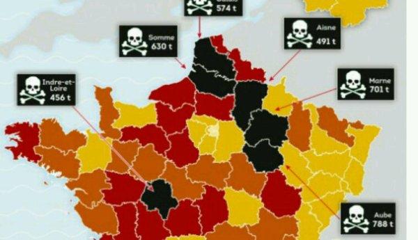 L'Aube championne de France pour l'utilisation de pesticides dangereux