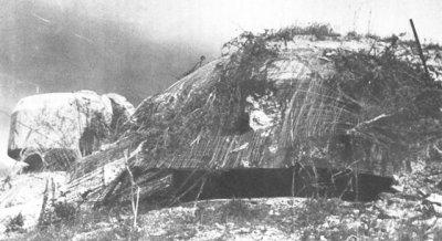 Chapitre 11- L' invasion de la Grèce - Hitler au secour de son impuissant allié Mussolini ...