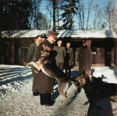 57 - Hitler prépare la phase 2 de la guerre à l'Est : Le Plan Bleu, et le Caucase.