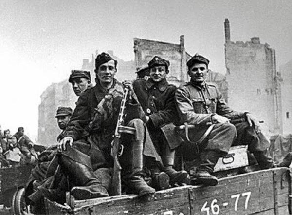 135 - La Ruée sur Berlin 2 - le Front Allemand s'effondre du Nord au Sud l'offensive de Rokossovski et le 2e Front Biélorusse , promenade militaire en Allemagne du Nord.