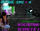 Photo de CRiTiQUE-SiMS-o1