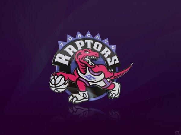 Retours sur les roster NBA 2013-2014:Raptors