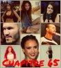 Chapitre 65