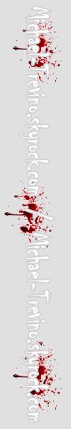 Il y a quelques jours le quatrième épisode tant attendu de la saison 3 de The Vampire Diaries a été diffusé.