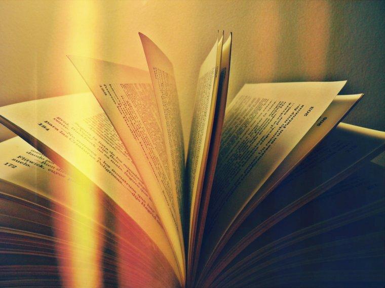 Il y aura toujours un livre qui te correspondra.